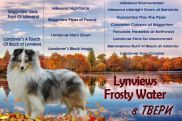 lynviews-frosty-water2019